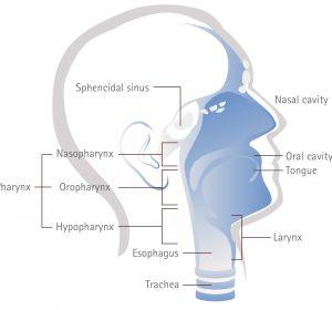 Рак горла — симптомы и лечение