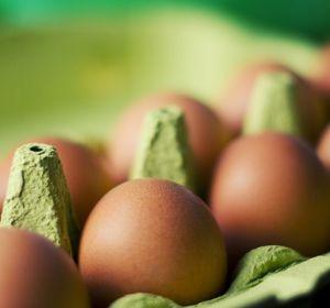 Почему все мы должны съедать хотя бы одно яйцо в день