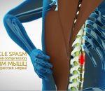 Протрузия поясничного отдела позвоночника: причины, симптомы и лечение