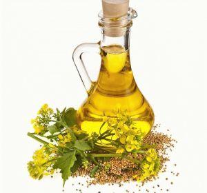Горчичное масло — полезные свойства и противопоказания к применению