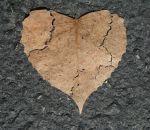 Раскрыты генетические истоки редкого заболевания сердца