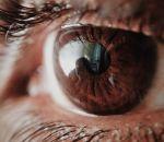 Первая роговица человеческого глаза, напечатанная на 3D-принтере