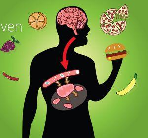 Препараты для обмена веществ в организме и похудения