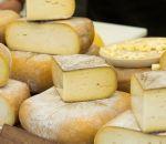 Ученые призвали не бояться сыра