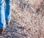 Получасовая прогулка снижает риск диабета, но только у мужчин