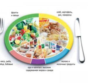 Питаемся раздельно: основные правила, мнения, рецепты блюд