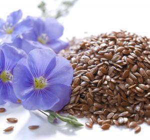 Семя льна от запора: рецепты для применения