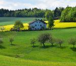 Жить на природе — действительно ли это лучше для здоровья?