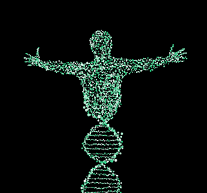 Ученые научились редактировать человеческую ДНК
