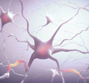 Электрическая кожа помогла почувствовать боль в протезе