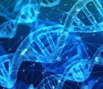 Китайские ученые смогли изменить гены