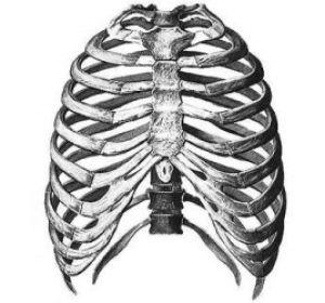 Что происходит при переломе ребра, как его лечить?