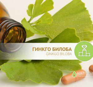Гинкго Билоба – инструкция и аналоги препарата