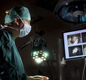 Ученые из Новосибирска смогут находить и уничтожать клетки рака