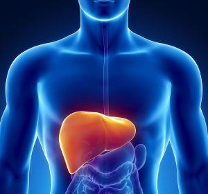 Цирроз печени: причины, признаки, симптомы и лечение