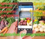 Диета при кандидозе кожи — рацион и правила питания, рецепты блюд с фото