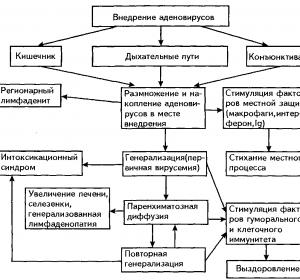 Симптомы аденовирусной инфекции у взрослых и инкубационный период