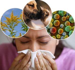 Капли в нос от аллергии — обзор гормональных и негормональных антигистаминных средств