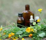 Цирроз печени – лечение народными средствами, применение трав и соков