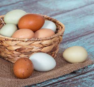 Сырые яйца для потенции у мужчин