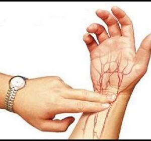 Пульс здорового человека — каким он должен быть?