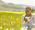 Как правильно бороться с аллергией?