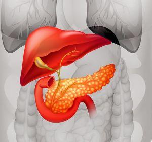 Простатэктомия – что это такое: удаление предстательной железы и реабилитация
