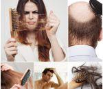 Ломкость волос – что делать, виды, причины и лечение