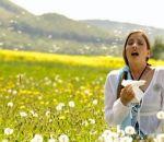 Как распознать и избавиться от болезни поллиноз?