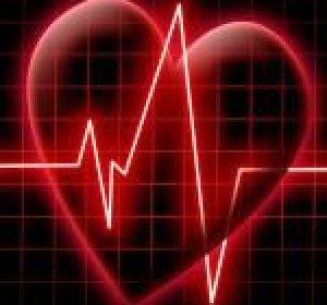 Кардиология: виды заболеваний сердца, их признаки и лечение сердечно-сосудистой системы
