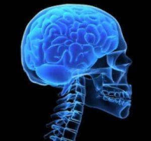 Опасна ли арахноидальная киста мозга и нужно ли её удалять?