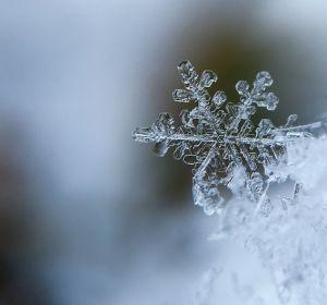 Во всем мире зимой возрастает смертность