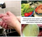 Дизентерия: как уберечься от инфекции, признаки и профилактика шигеллеза