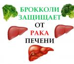 Брокколи защищает от рака печени