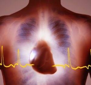 Новые кардиоимплантаты: высокое качество и низкая стоимость
