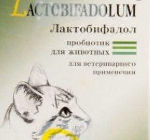 Пробиотики для кишечника: инструкции по применению медикаментов