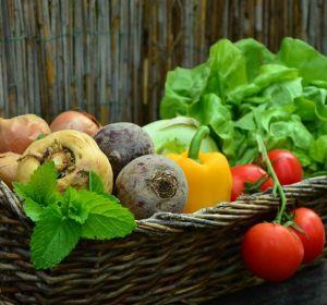 Ученые проверили, спасет ли еда от рака