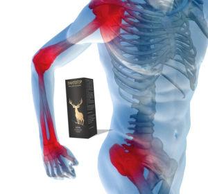 Секрет быстрого избавления от суставных заболеваний: гель «Пантогор»