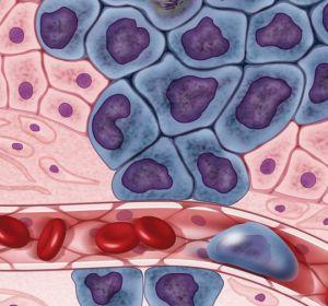 Ученые обнаружили мозаику мутаций в нормальных тканях человека