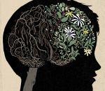Судороги во сне: причины у детей и взрослых, лечение спазмов