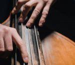 От чего умер Моцарт и другие великие композиторы
