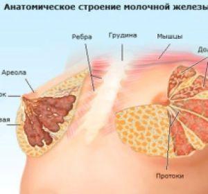 Болезненные ощущения в молочное железе — причины и лечение
