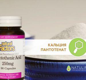Пантокальцин – инструкция по применению, состав, суточная дозировка, побочные эффекты и отзывы