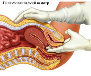 Диагностика гинеколога