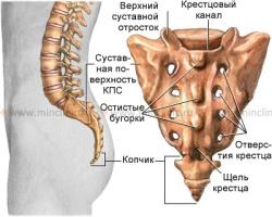 Боли в крестцовом отделе позвоночника: причины и способы лечения