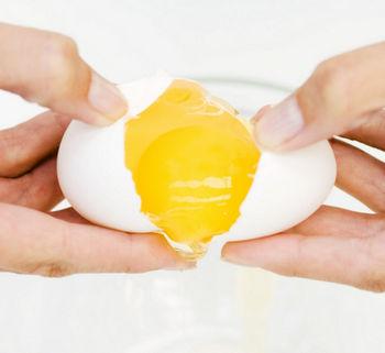 Разделение яйца на желток и белок