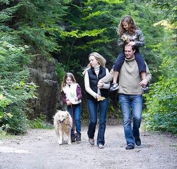Семья с собакой гуляют в лесу