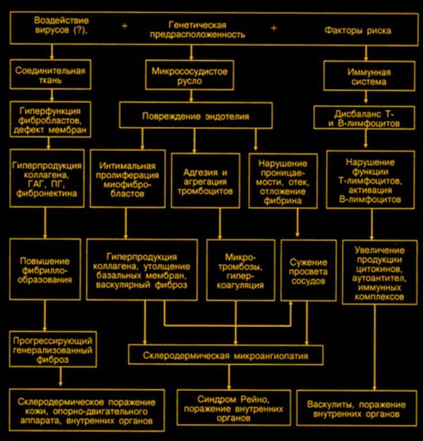 Патогенез системной склеродермии