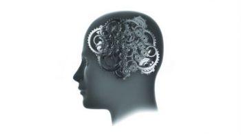Пять факторов ухудшающих вашу память