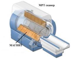 Магнитно-резонансный томограф в розрезе.